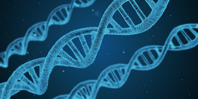 Vitamín D má pod kontrolou kolo 2500 génov. FOTO: Pixabay