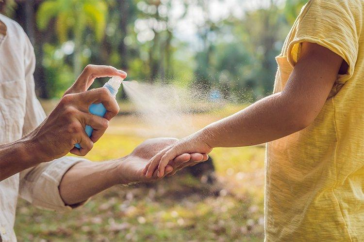 Chrániť sa treba pred komármi. Psy človeka nenakazia. FOTO: Adobe Stock