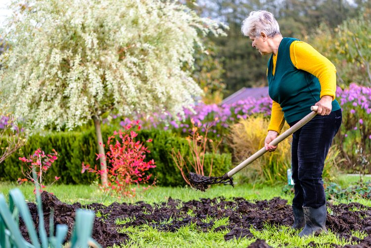 Práca v záhrade je krásne hobby, ale aj skúška vašej kondície. FOTO: AdobeStock
